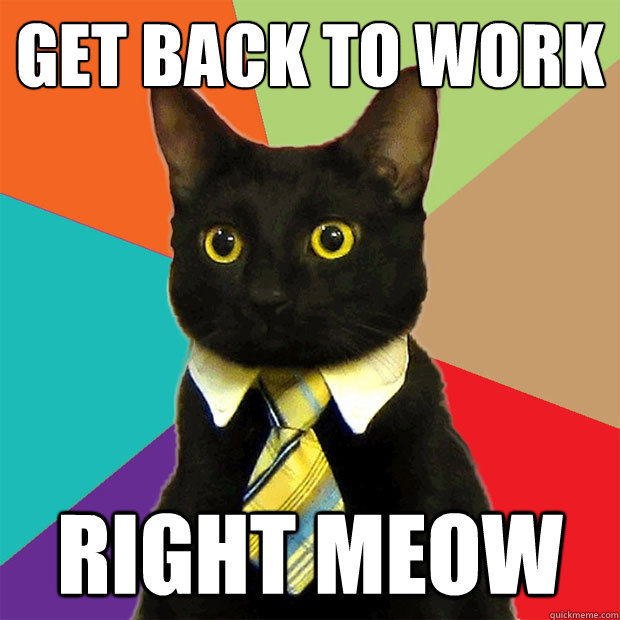 business-cat-right-meow