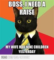 business-cat-nine-children