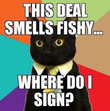 business-cat-this-smells-fishy