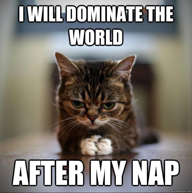 world-domination-cat-nap