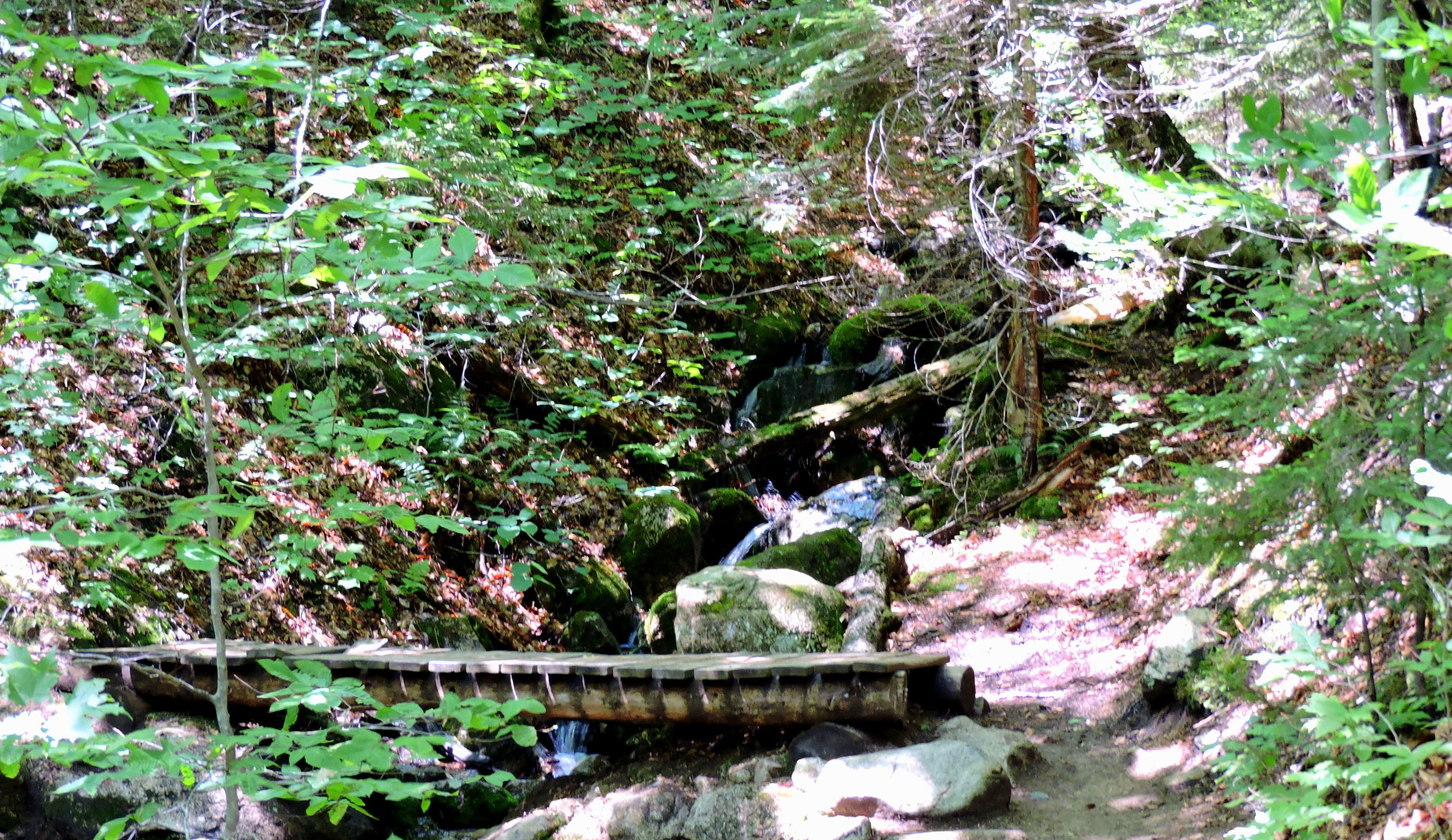 Wooden bridges are used in hiking trails to make it easier to climb over small creeks, streams, and muddy areas.