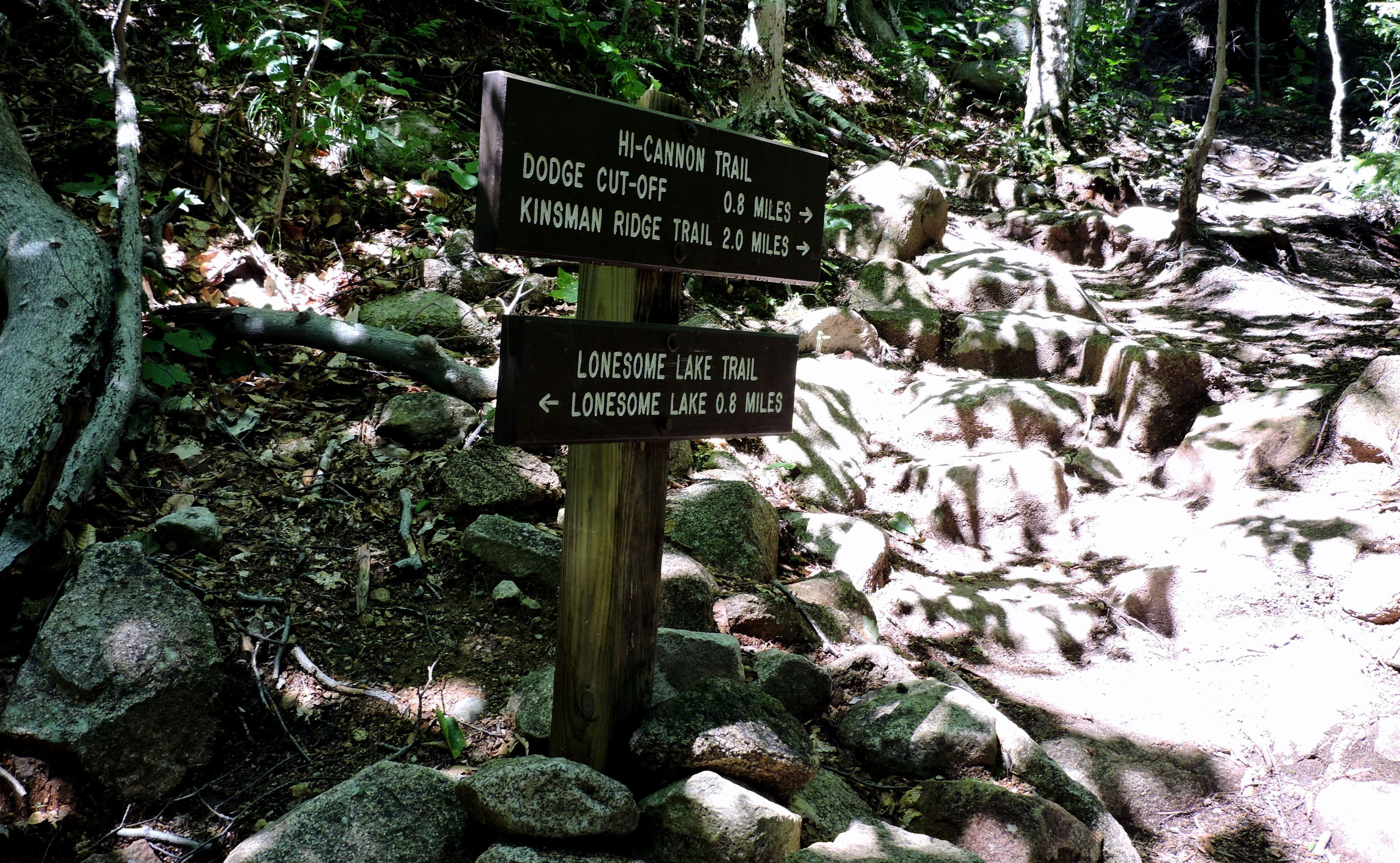 Signs are frequently used for helping hikers find their way through the state forest. This sign pointed Ariele and Josh towards Lonesome Lake.