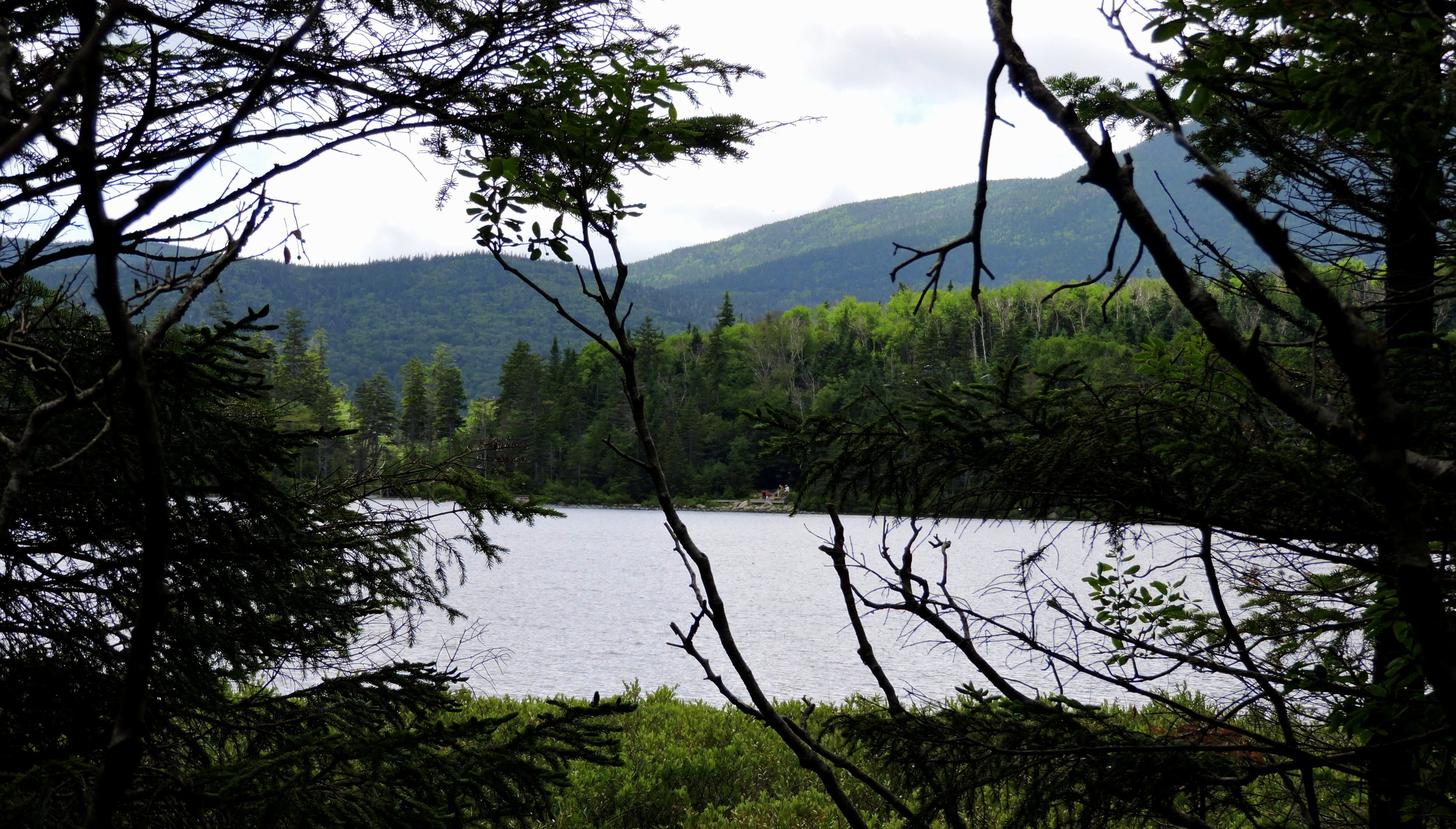 The average depth of Lonesome Lake is only four feet.