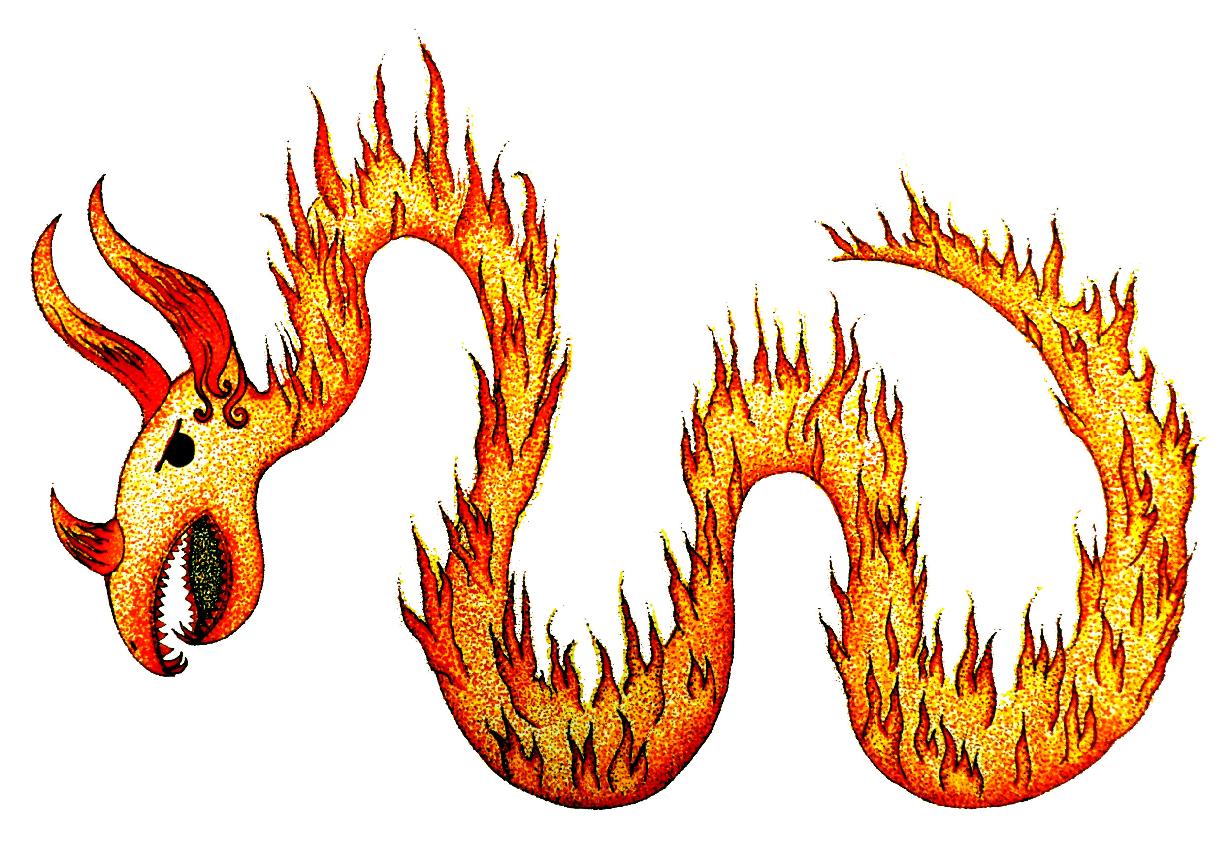 fireworm 9edited.jpg
