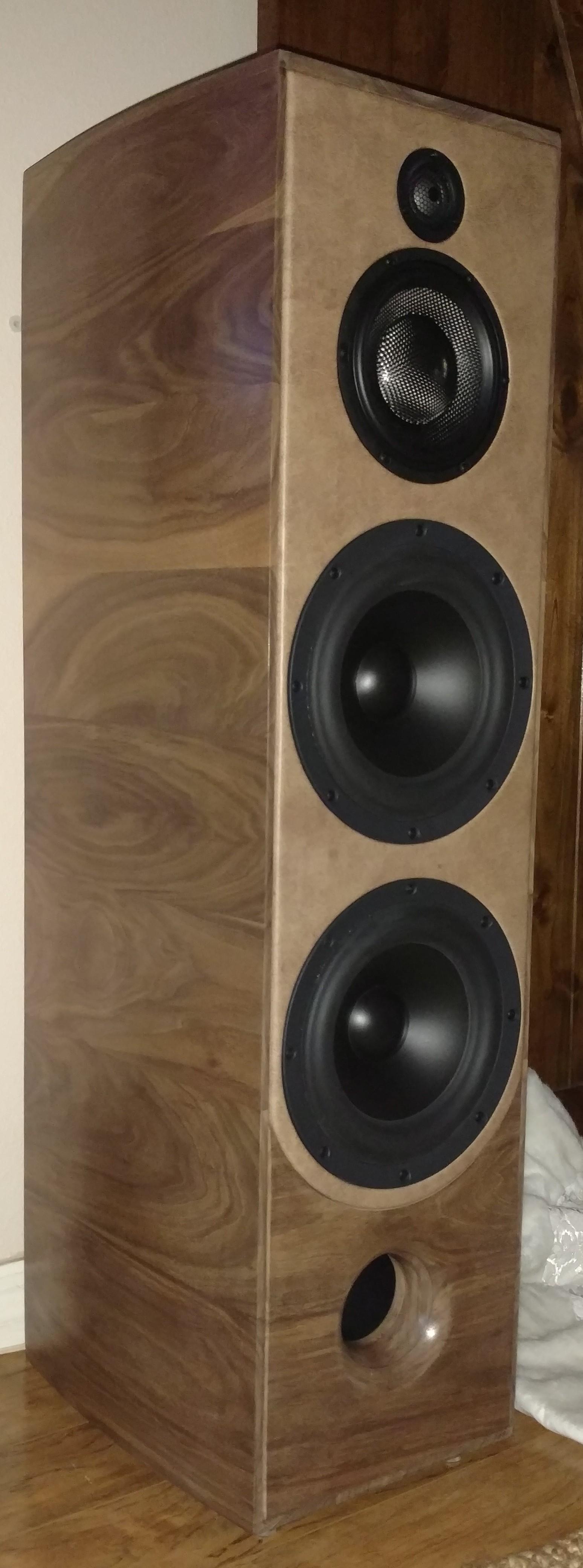 Coesivo speaker.jpg
