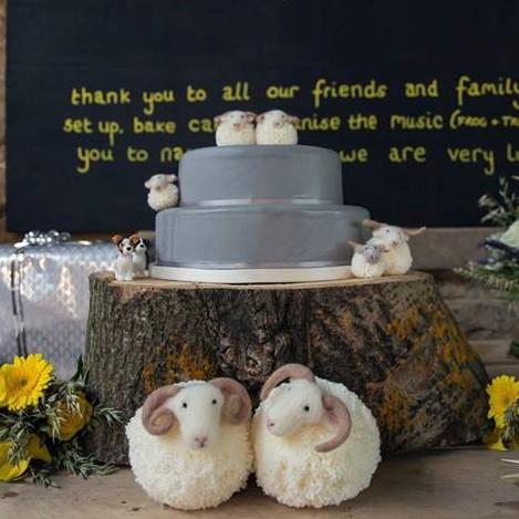 sheep 1 (2).jpg