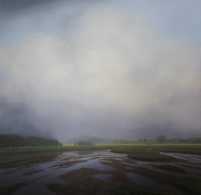 macneille-marsh-fog.jpg