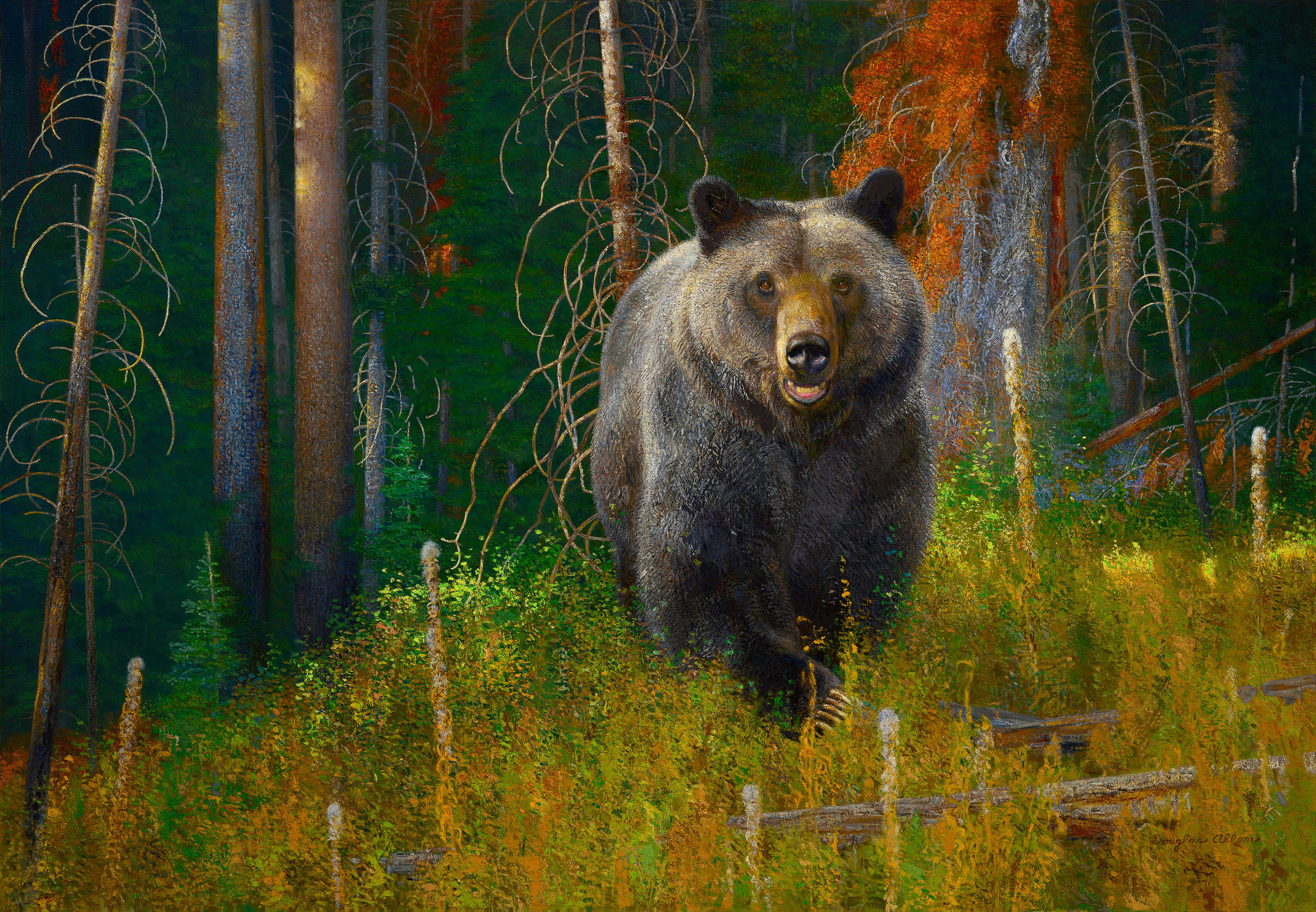 HIKERS NIGHTMARE (Grizzly Bear)