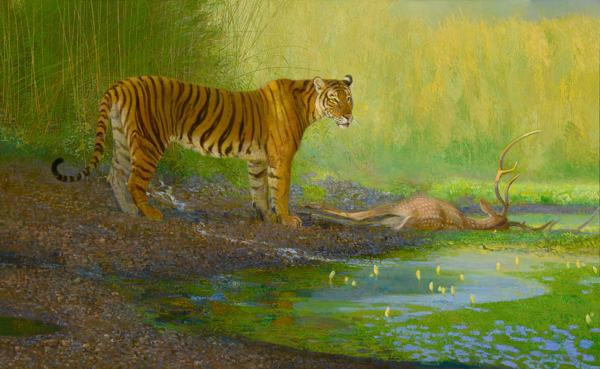 SHERE KHAN (Bengal Tiger)