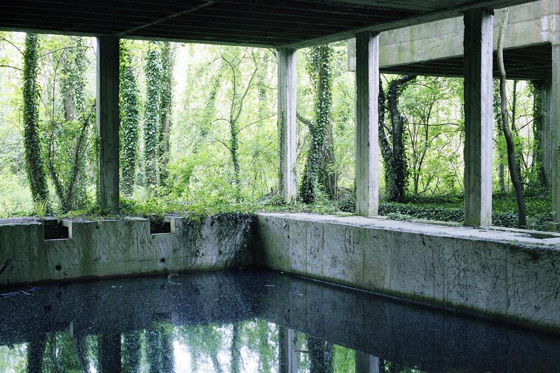 Jardins intérieurs   - édition de textes et de photographies ( 2006 - présent )