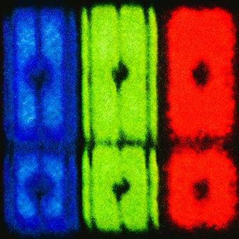 Prisms Noise Squarespace logo.jpg