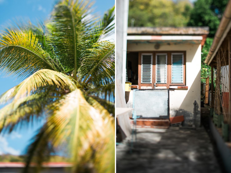 Martinique_West_Indies-0012.jpg
