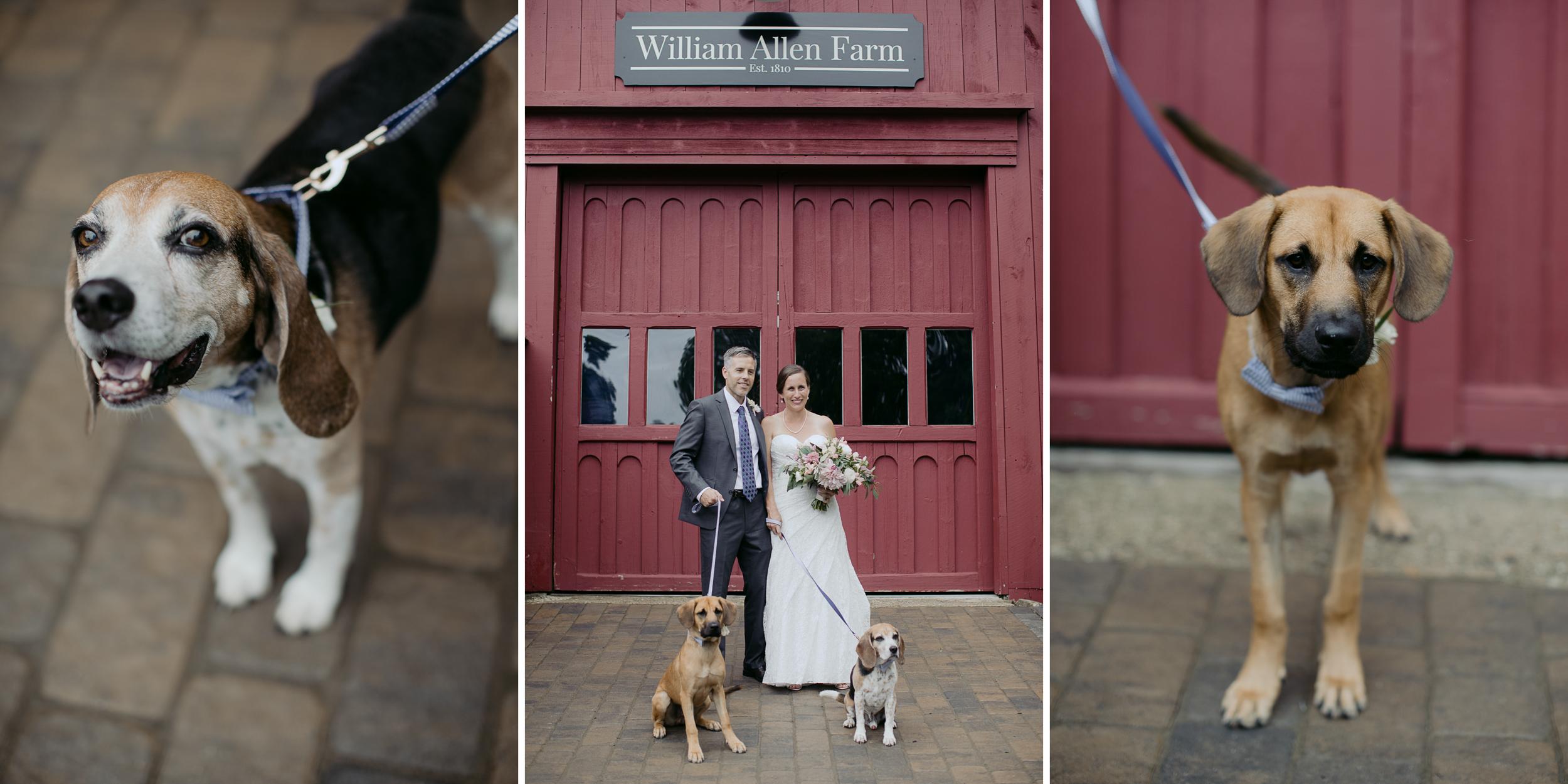 william_allen_farm_pownal_wedding_maine_michelleben-5.jpg