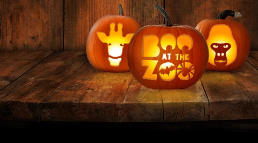 boo at zoo zsl hampstead mums