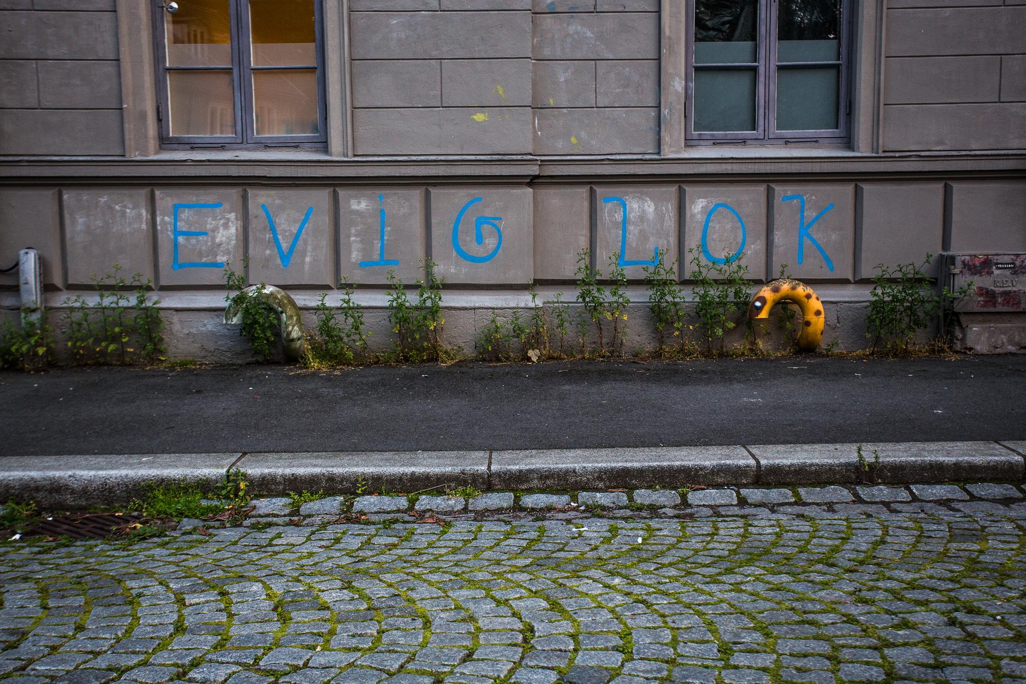 060815_fausko_oslo_damstredet_cityscape-3.jpg