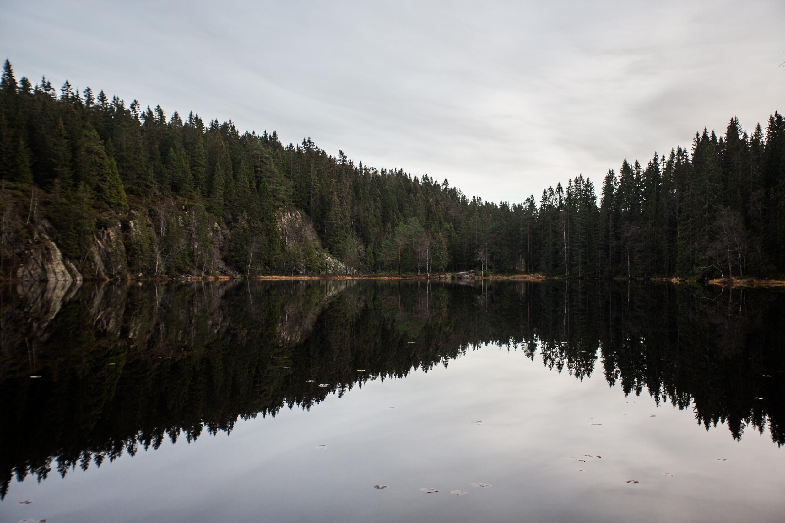 081115_fausko_oslo_skjennungstua_tryvannstårnet_landskap-2.jpg