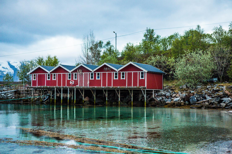 230516_fausko_lofotentravels_nordland_lillefugleøy_landskap_portrett-3.jpg