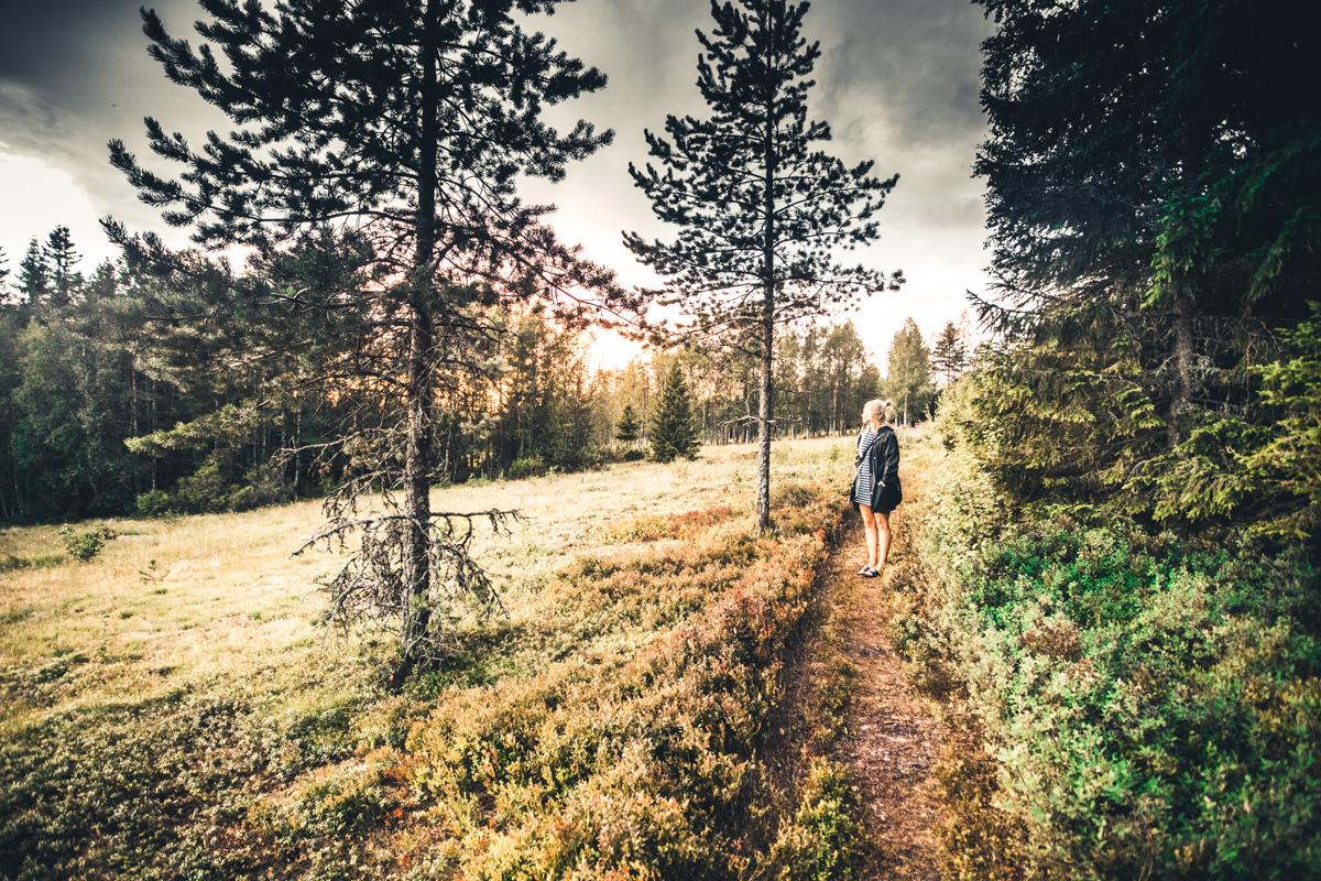 160718_fausko_sverige_malung_håberget_solnedgang_elin_hytte_ildskyer_landskap.jpg