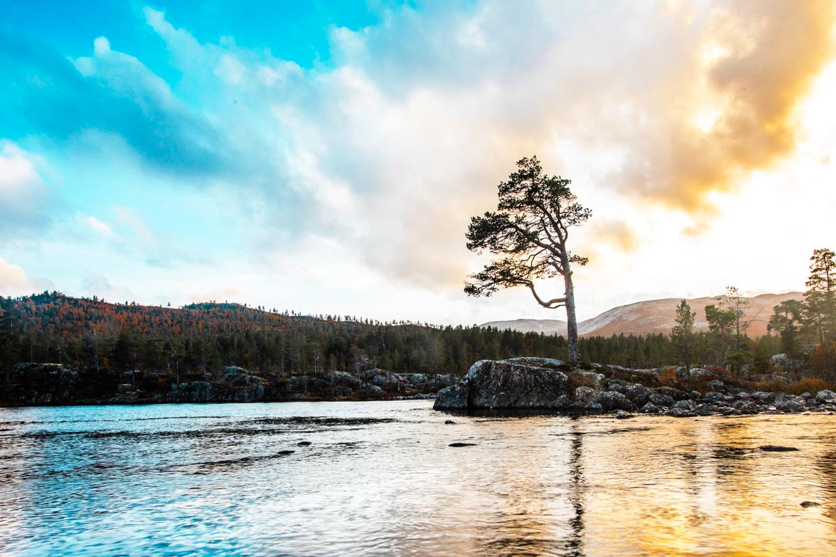 200918_fausko_hovden_høst_otraelven_solnedgang_landskap-2.jpg