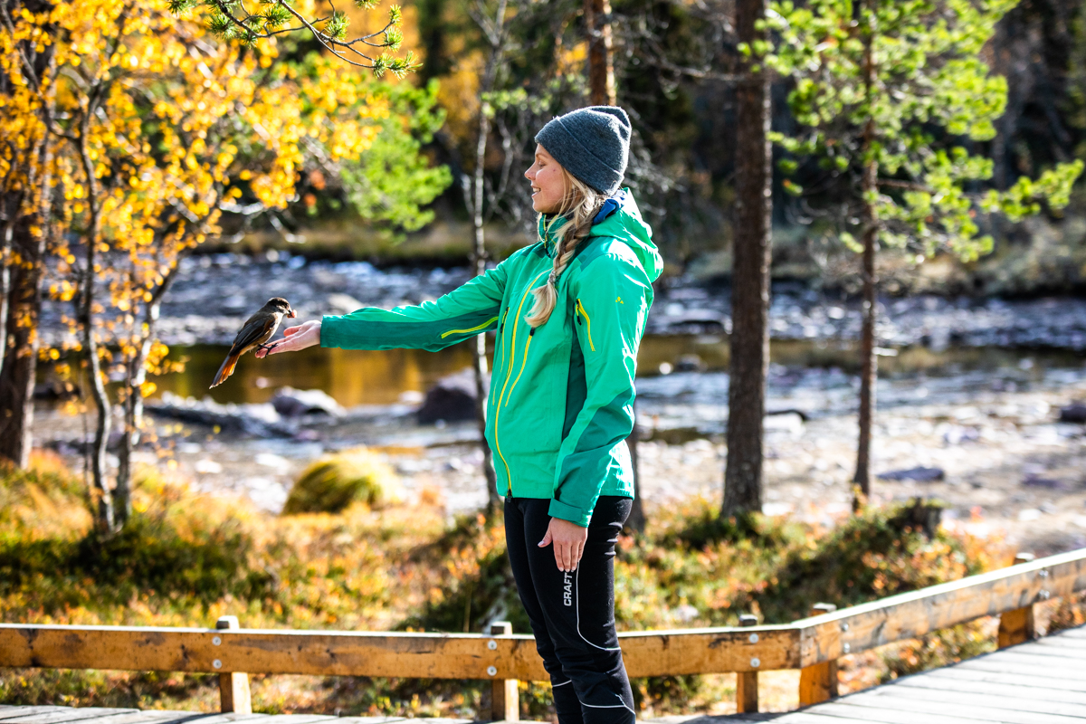 011018_fausko_sverige_fulufjellet_njupeskjær_fossefall_elin_portrett_landskap-8.jpg