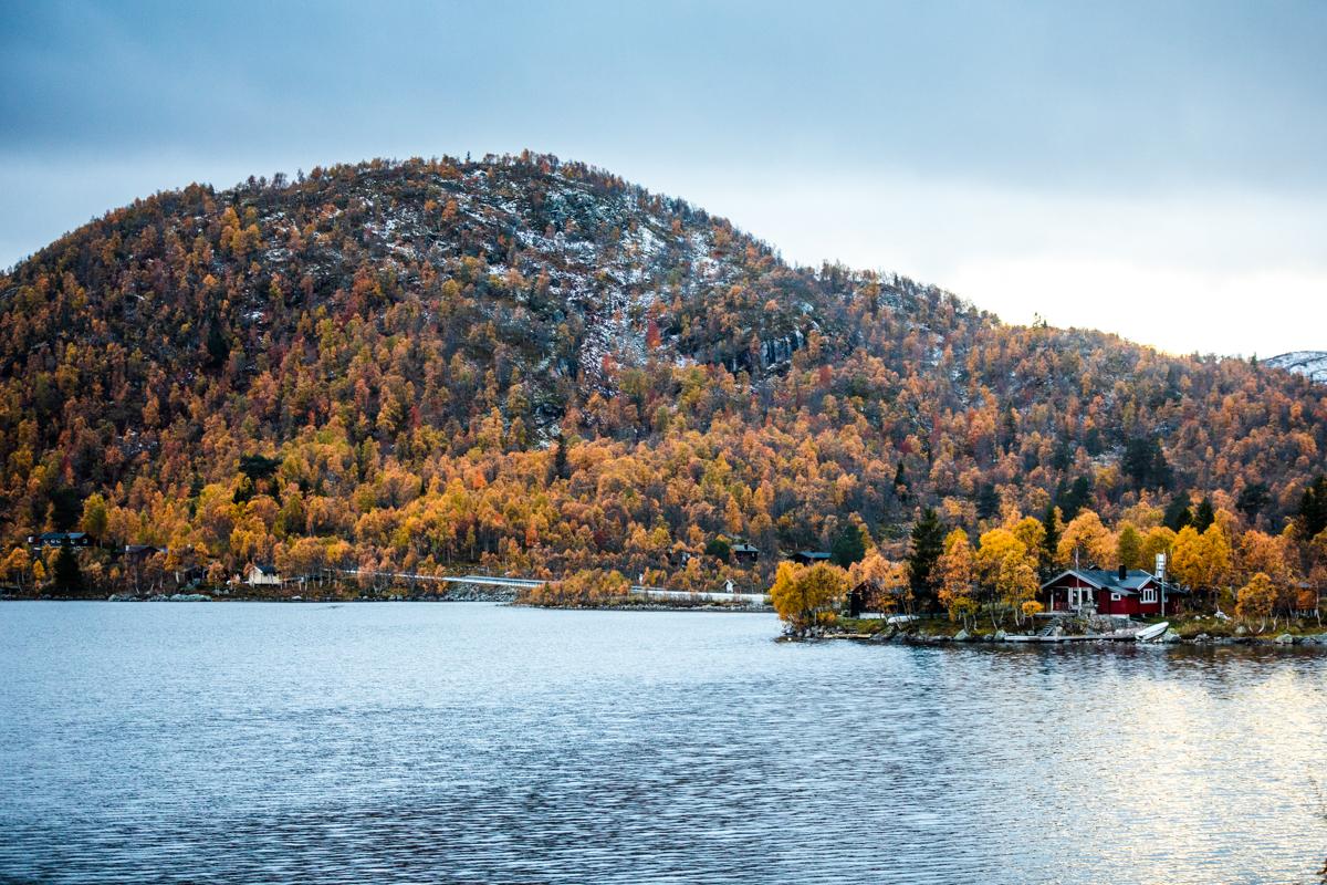 031018_fausko_dalen_fjellovergang_høst_landskap.jpg