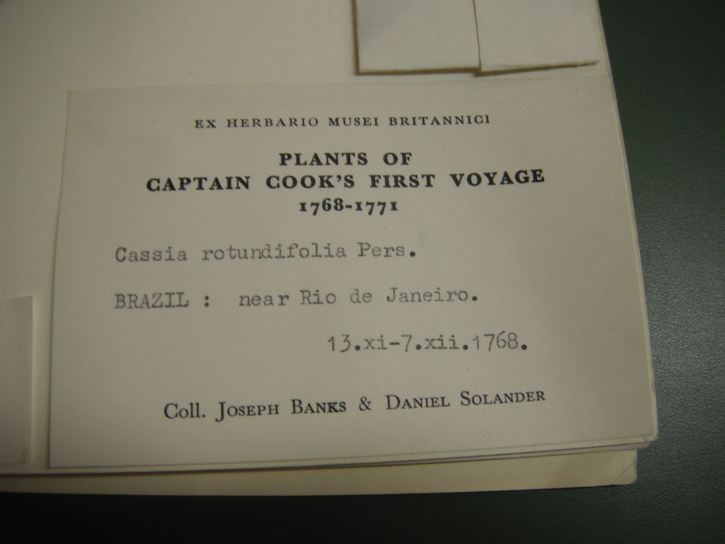 Specimen from Captain Cook's voyage