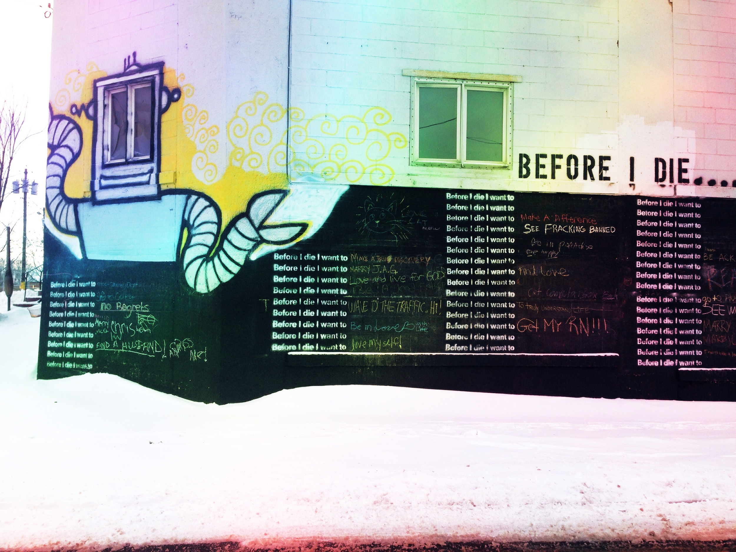 This mural stopped me in my tracks. What do you want to do before you die?