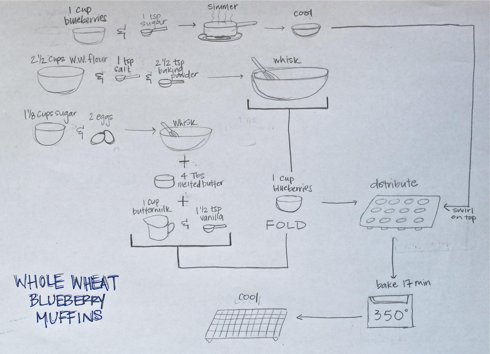 blueberrymuffin.diagram.jpg