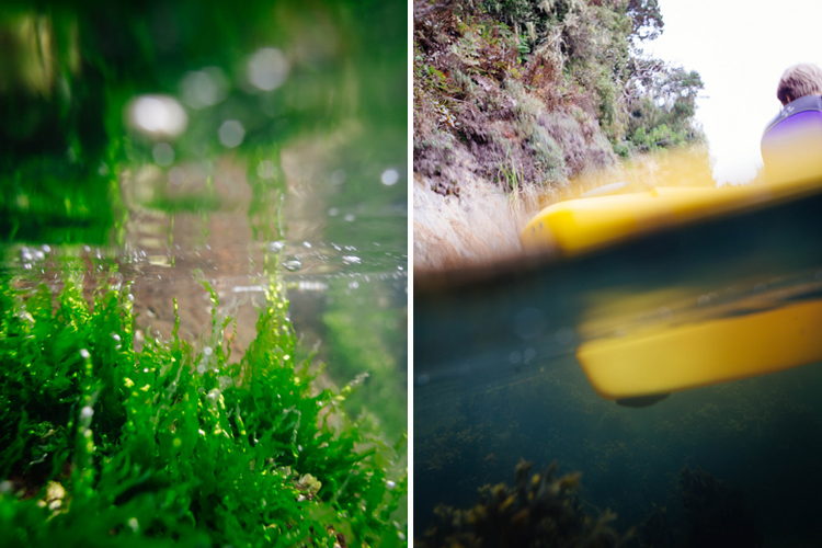 Test shots with my DSLR inside an ewa-marine bag from the side of a kayak in Tomales Bay, CA.