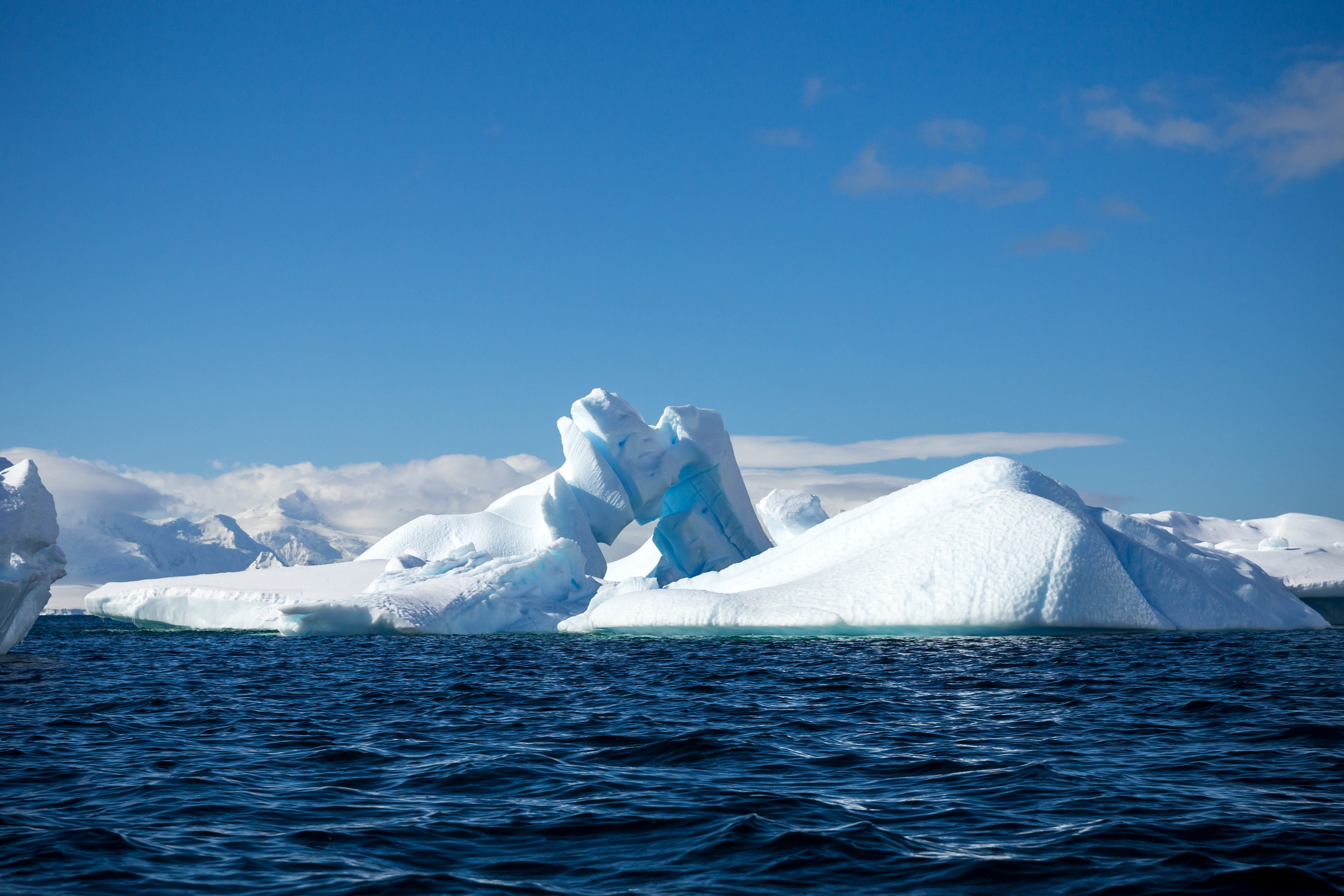 The fantastic ice of Cuverville Island.