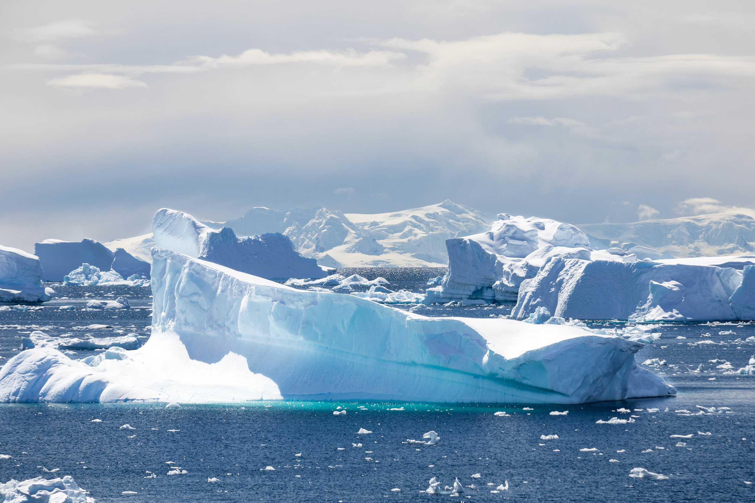 Incredible shapes and colors of the ice as we sail intoCharlotte Bay.