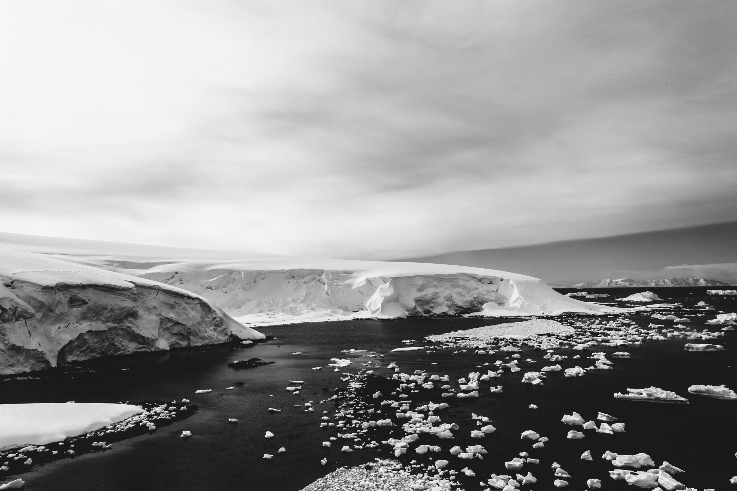 aqm-antartctica-noir-12.jpg