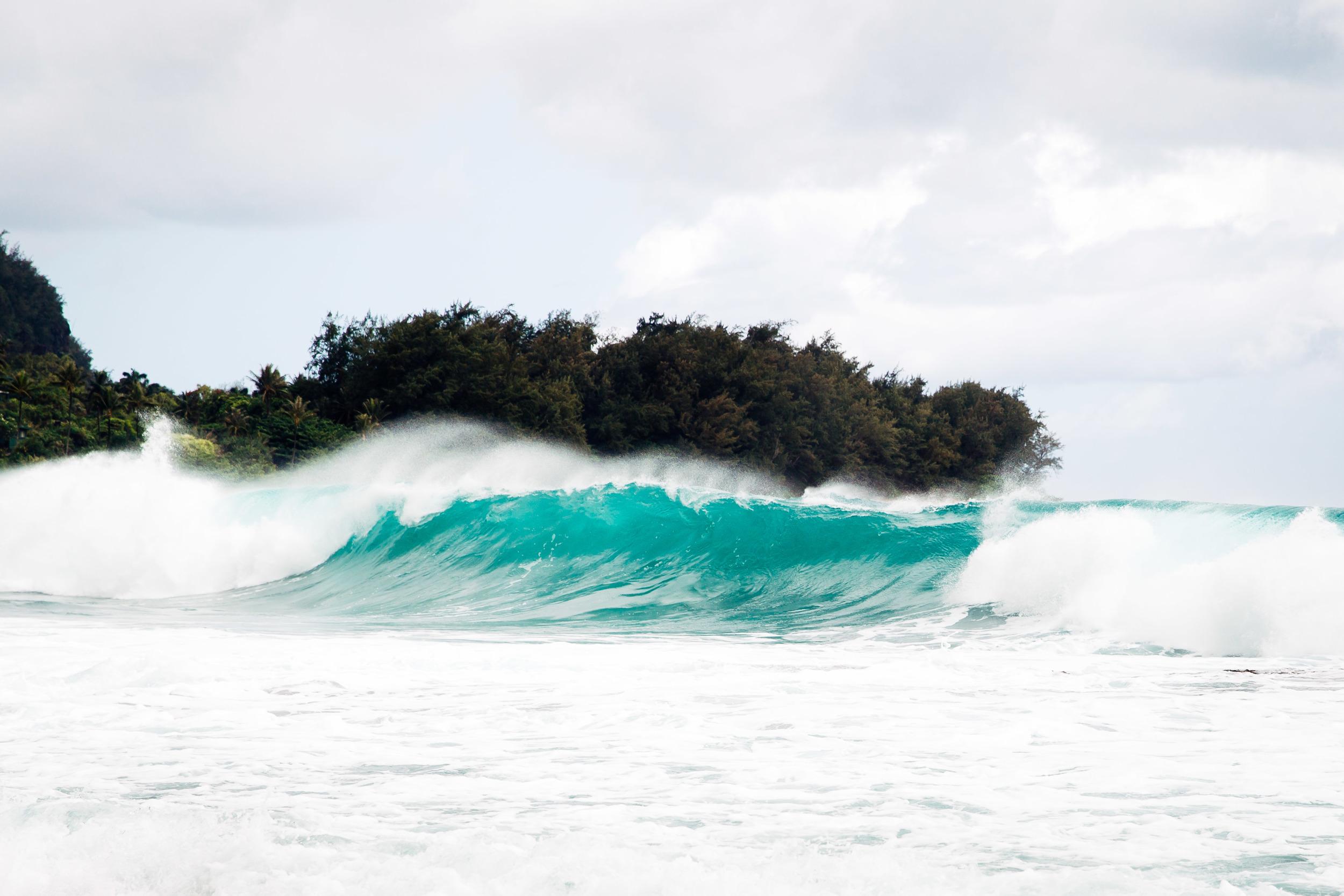 kauai-1196.jpg