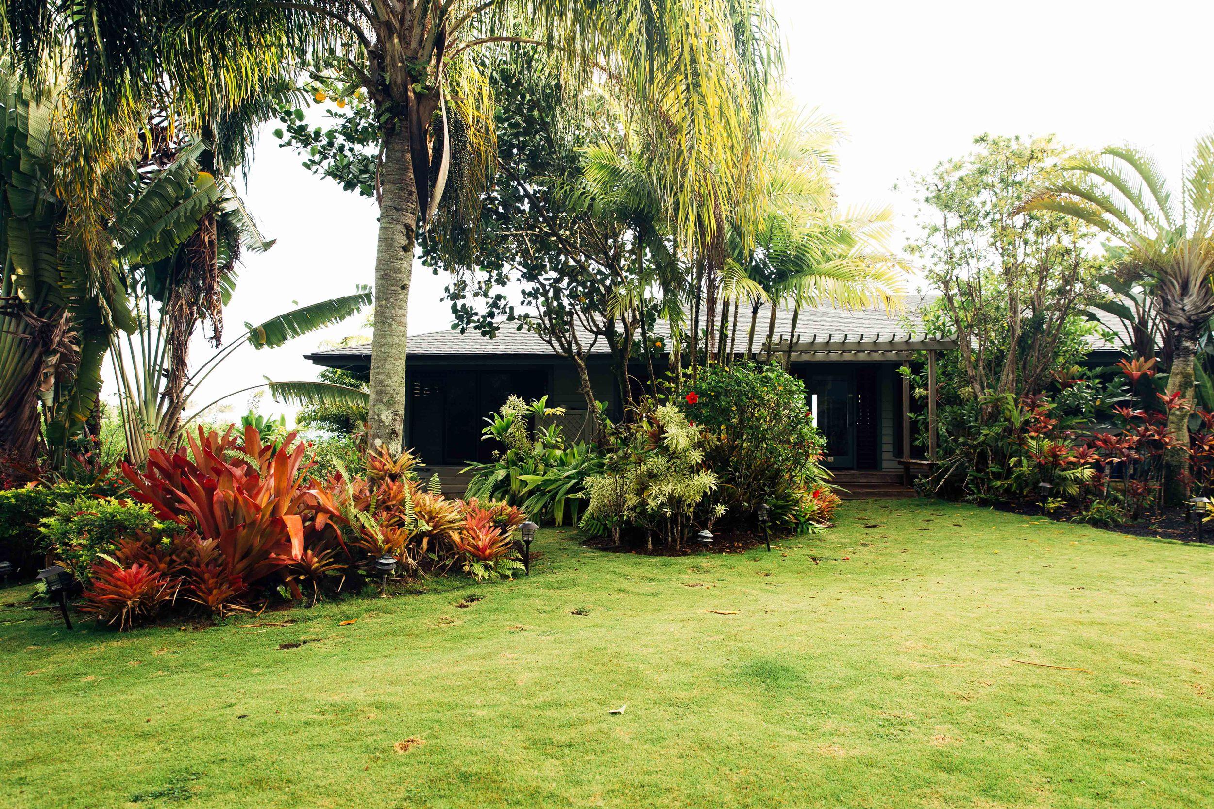 kauai-1443.jpg