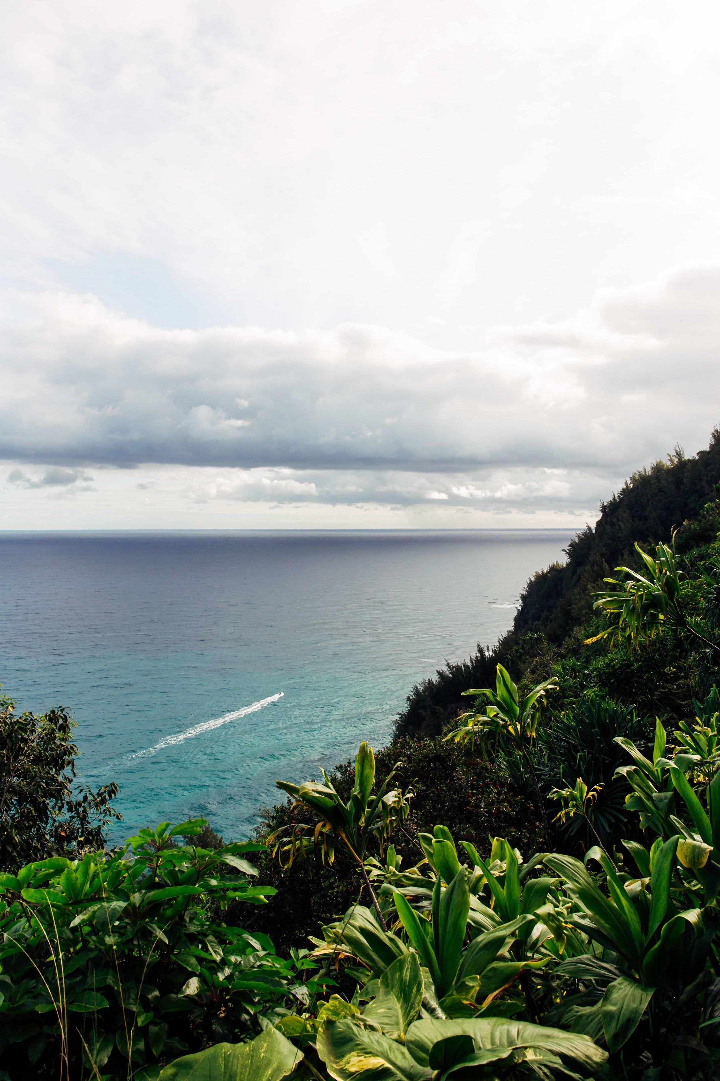 kauai-2255.jpg
