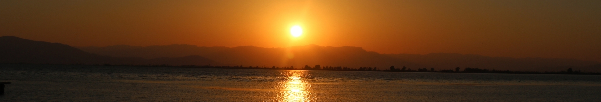 Sunset in the natural park Delta de l'Ebre in Spain.