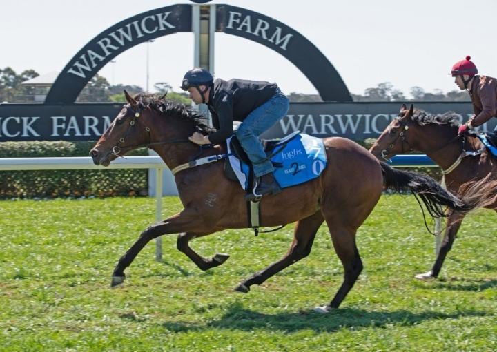 A Winning Gallop by Lot 170