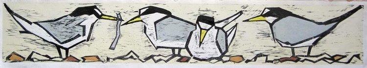 """""""LITTLE TERNS""""  by Lisa Hooper website:  www.hoopoeprints.co.uk"""
