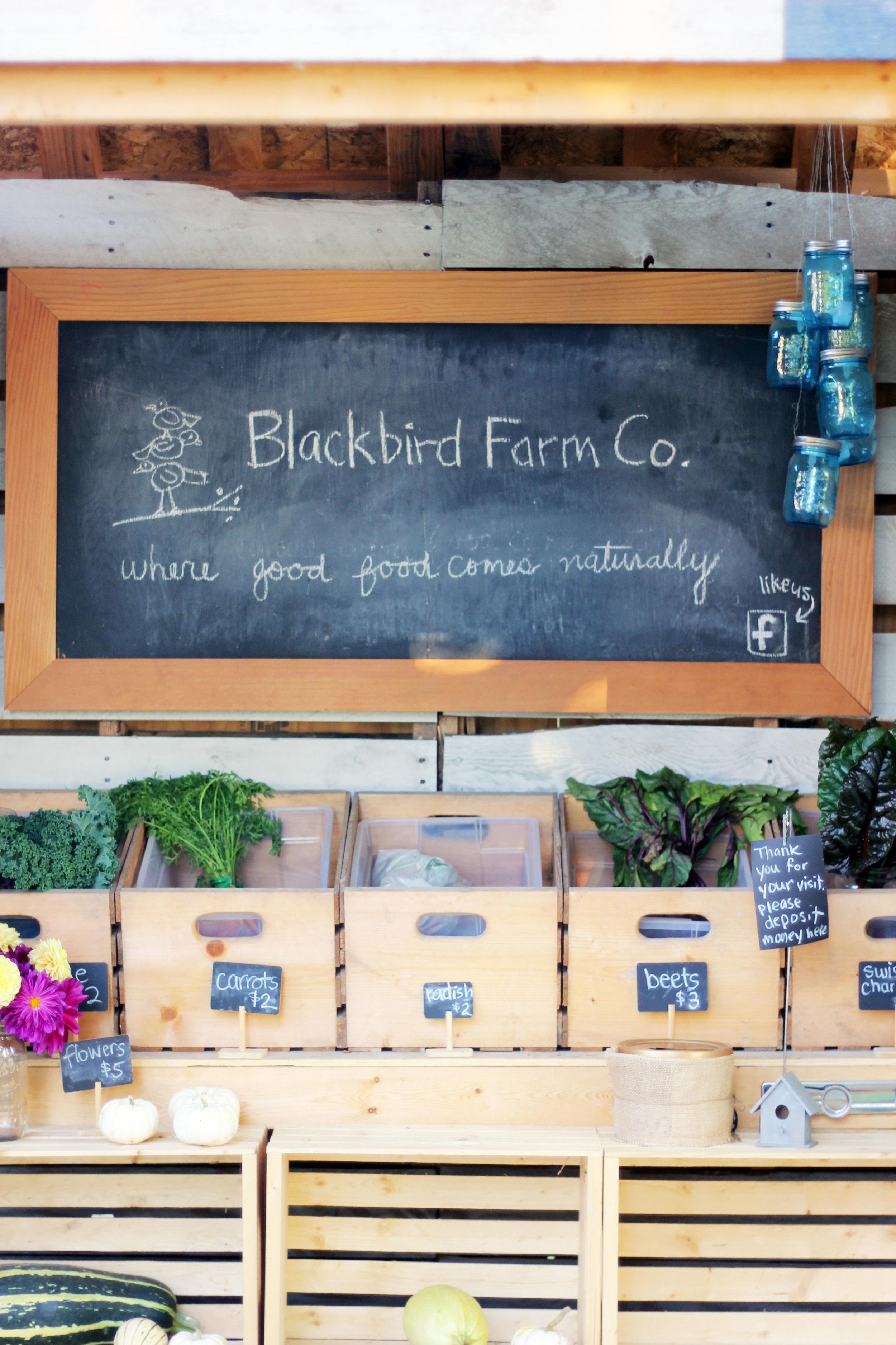 Chilliwack farm shopping