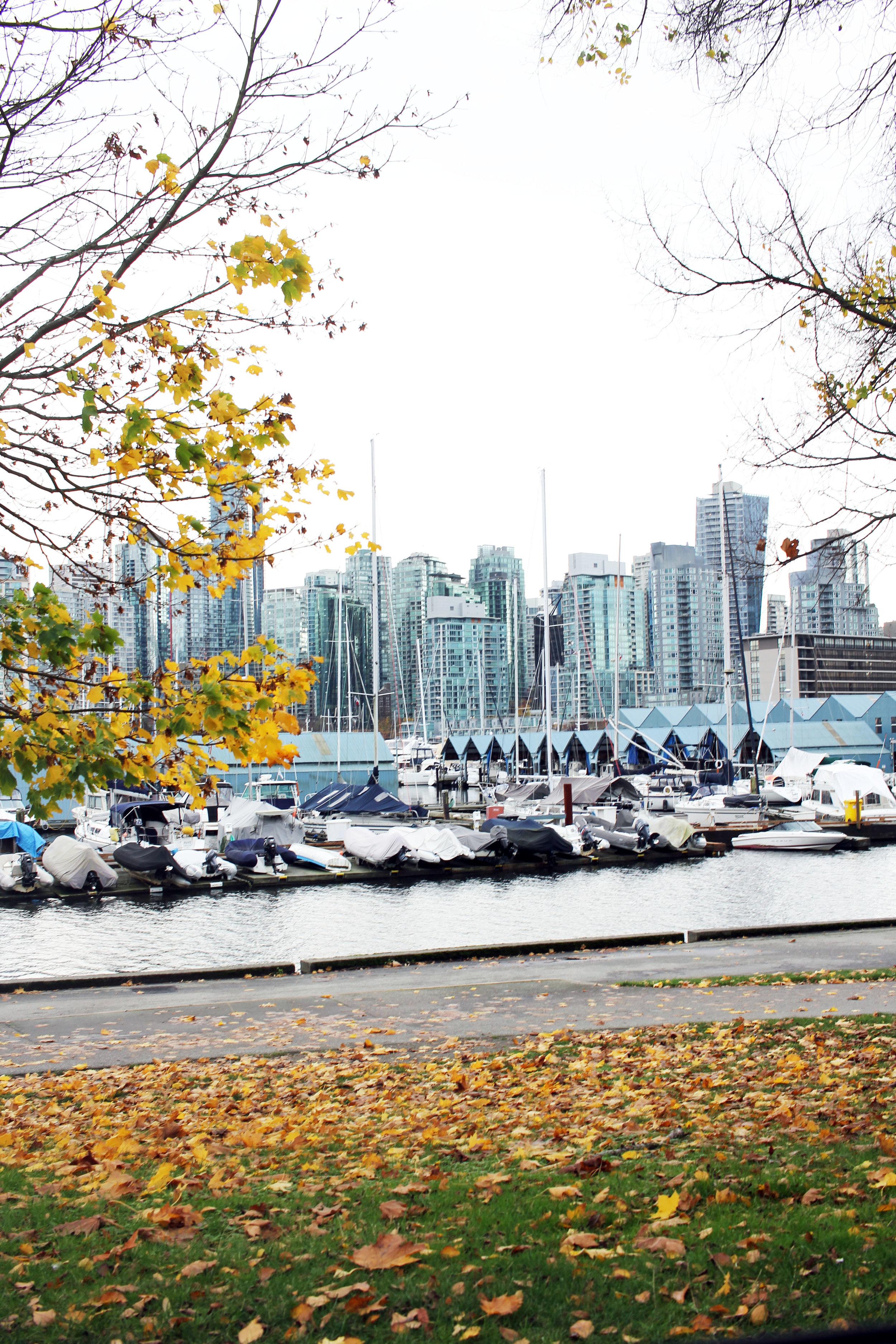 Vancouver views Stanley Park