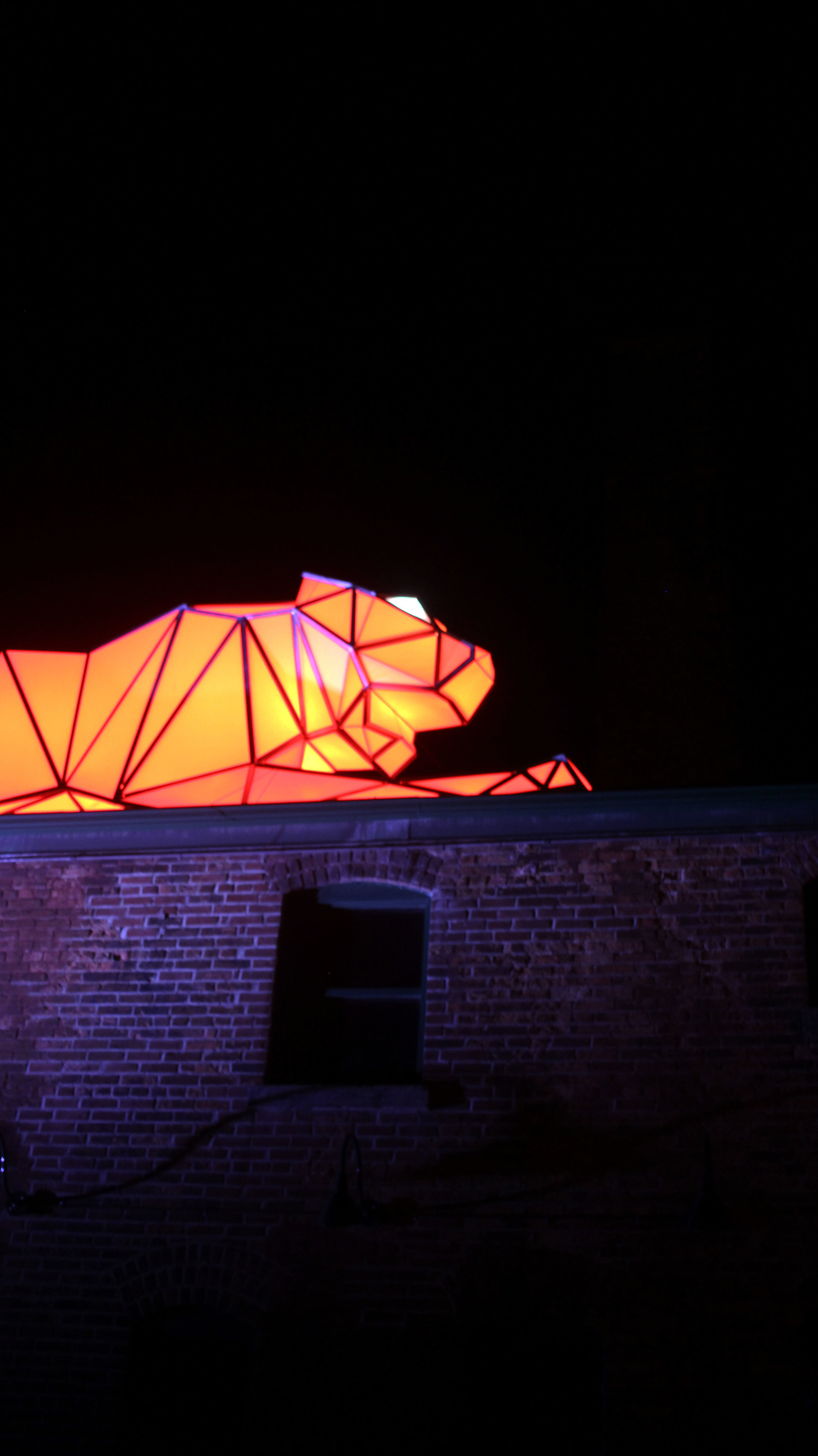 Tiger on the roof.