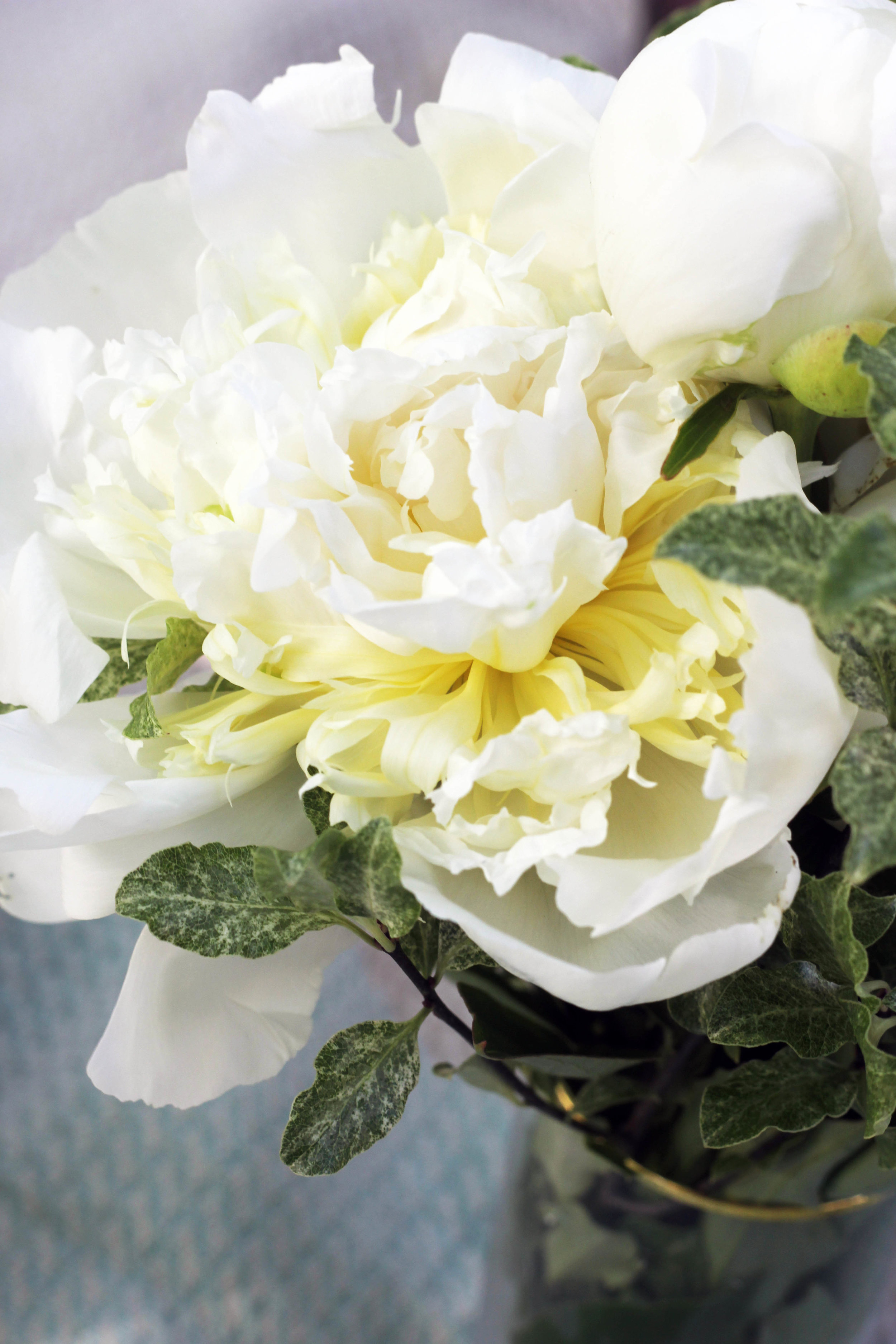 peonies as the centrepiece