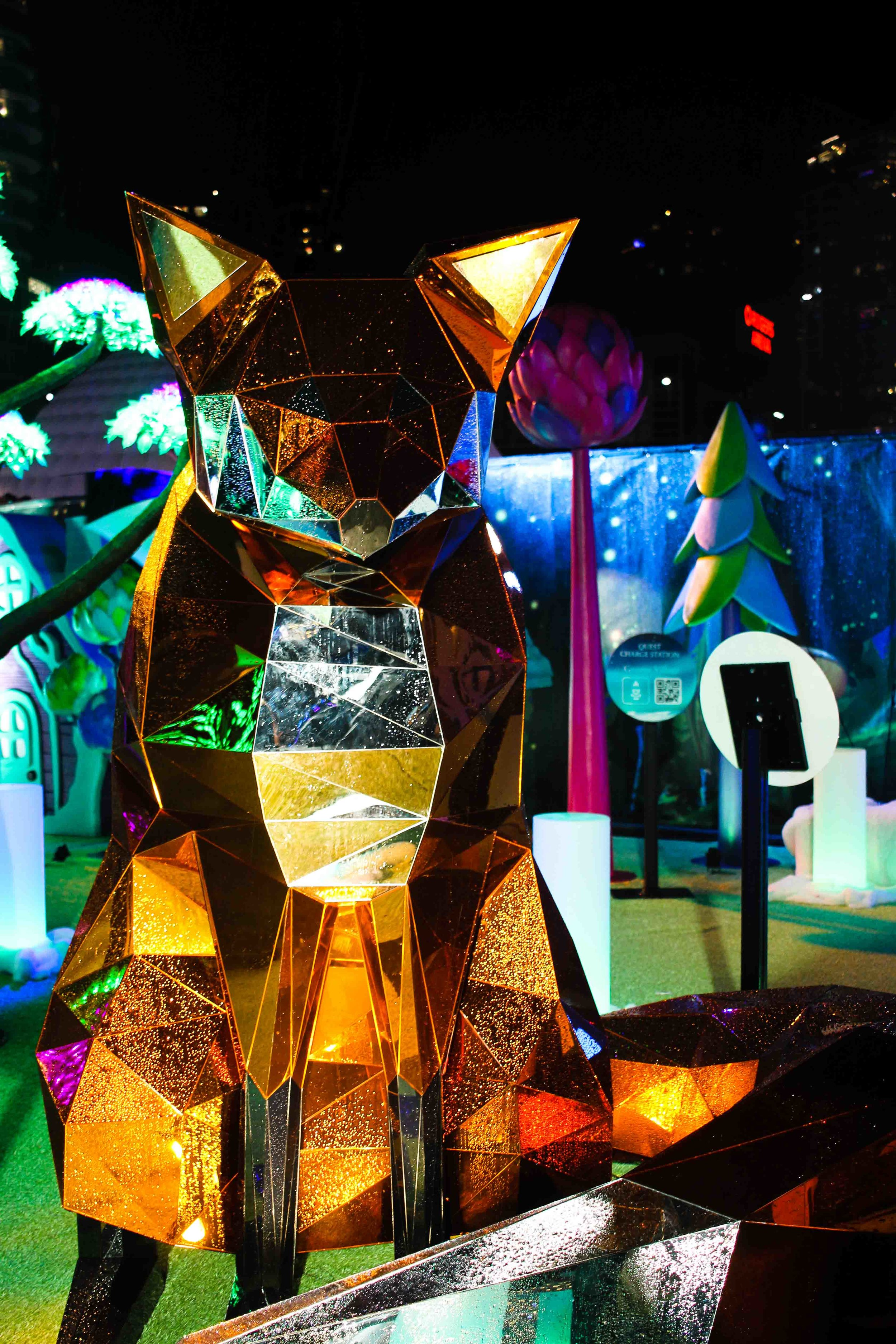 Aurora Fest (17 of 18).jpg