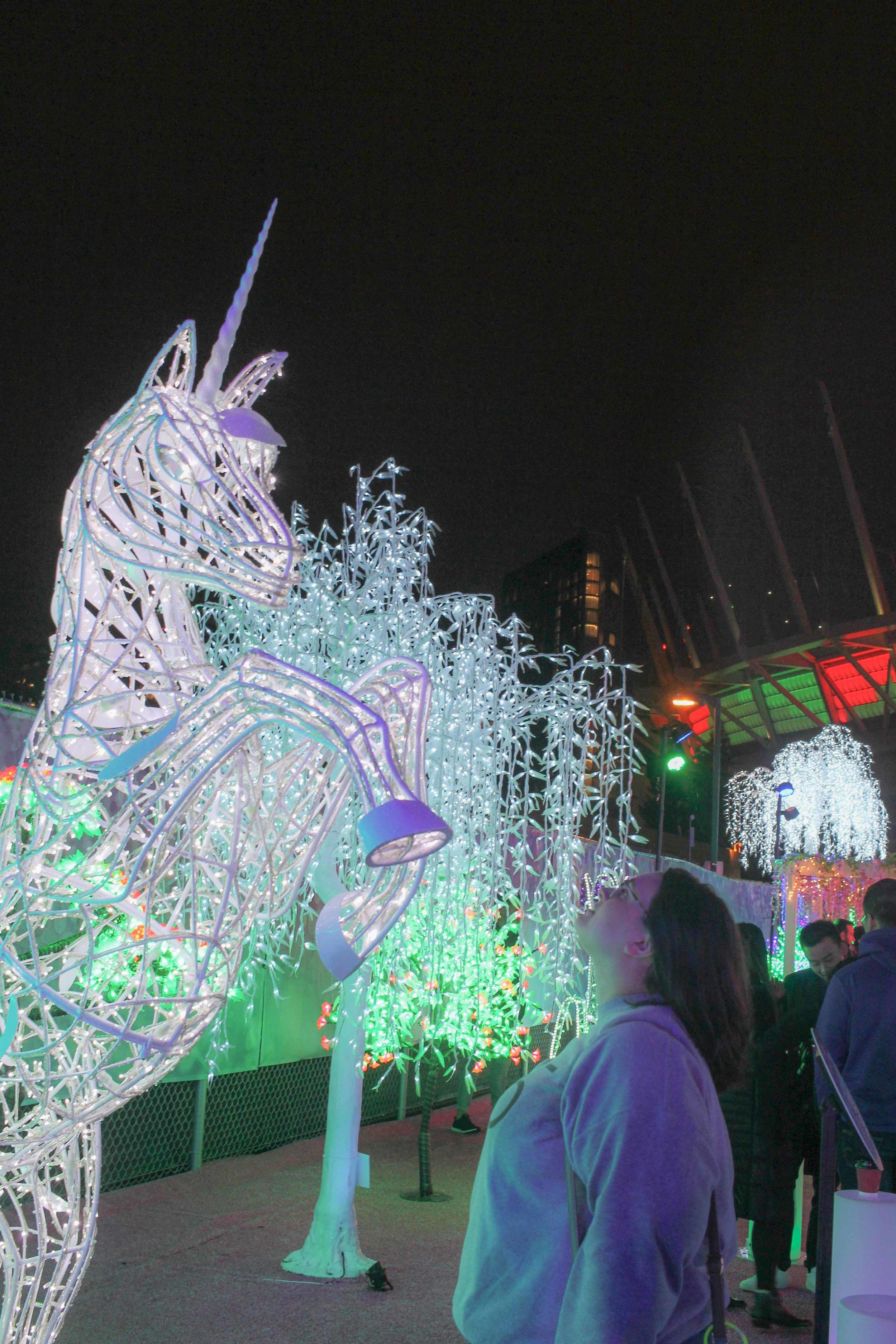 Aurora Fest (13 of 18).jpg