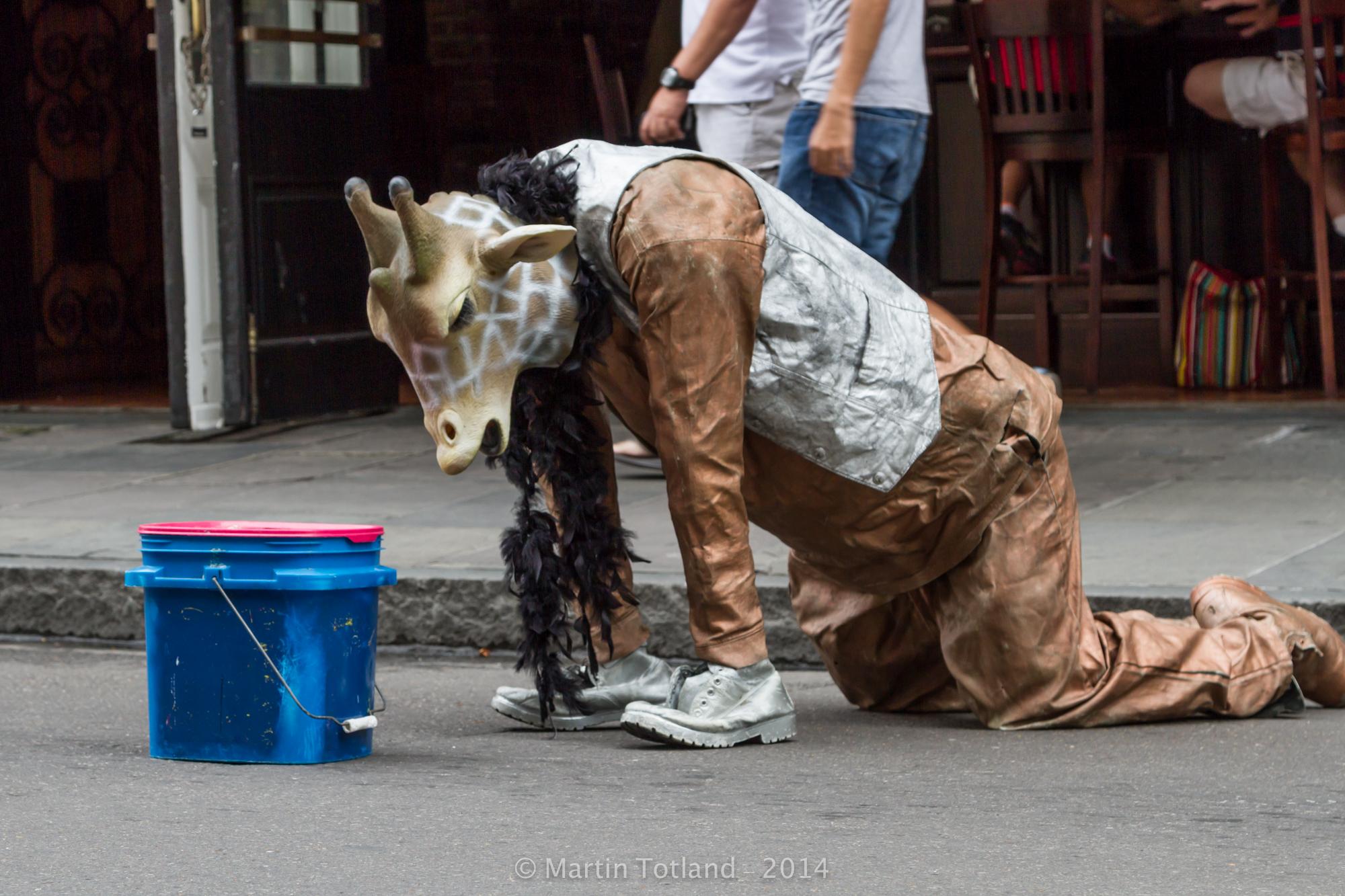 New Orleans Hobo Giraffe