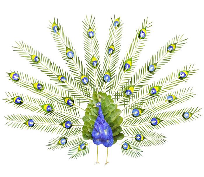 red-hong-yi-flower-bird-series-designboom-05