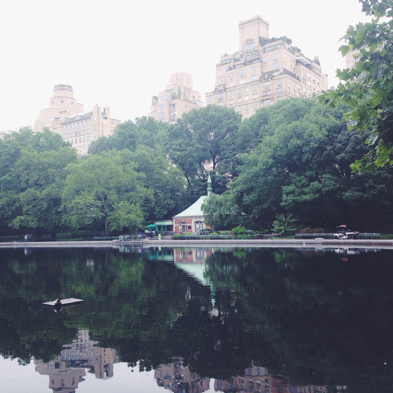 Liz Mosley - New York
