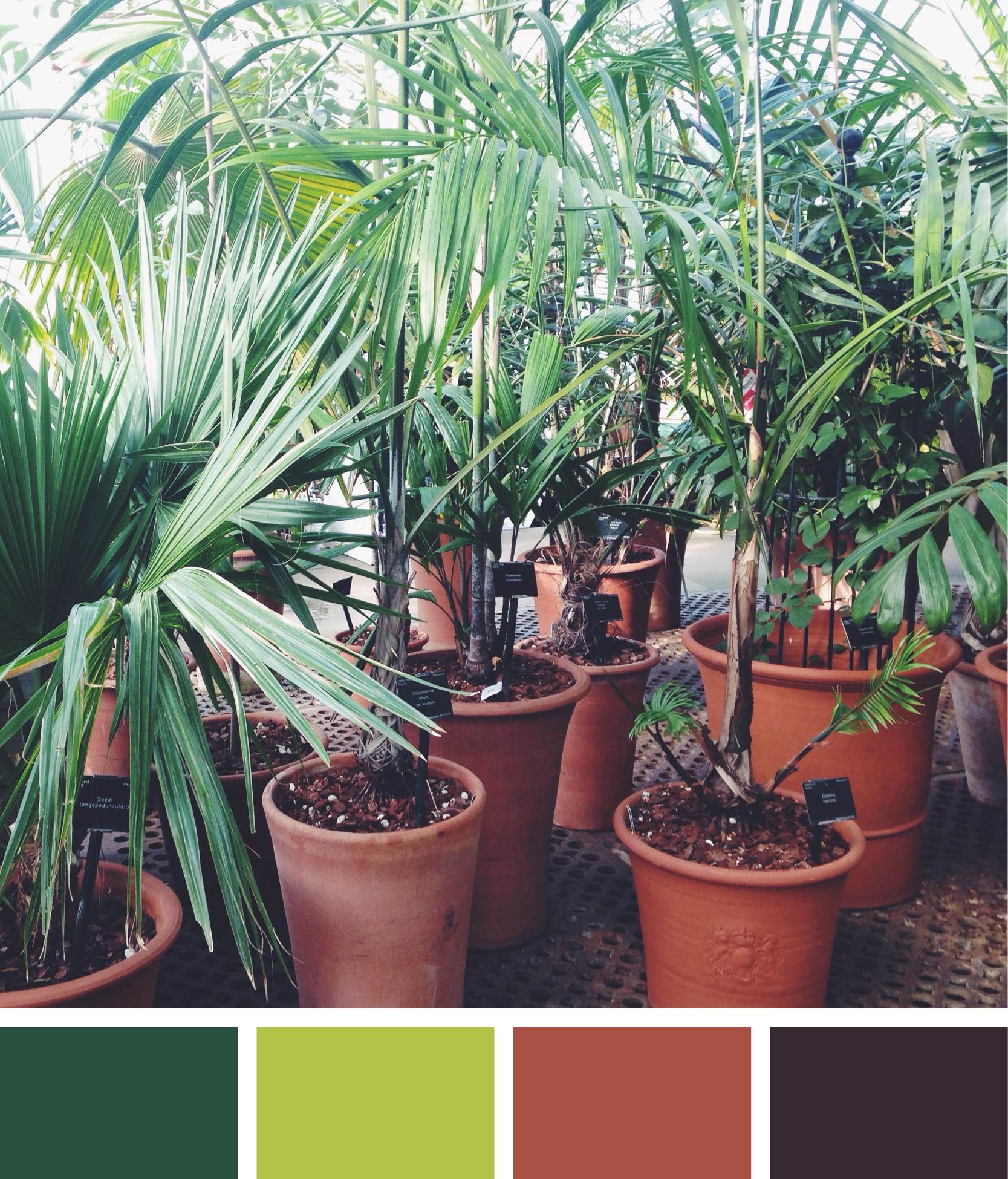 colours6.jpg