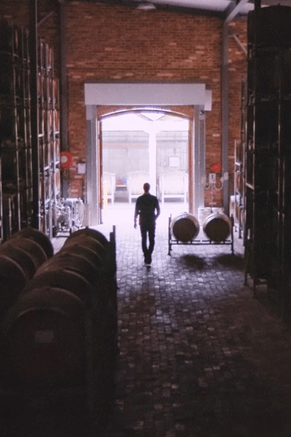 Exploring the historic barrel hall at Wirra Wirra.