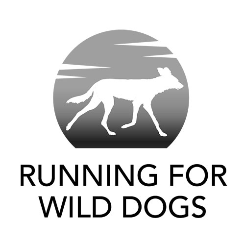 Running for Wild Dogs Red Fox Films Client